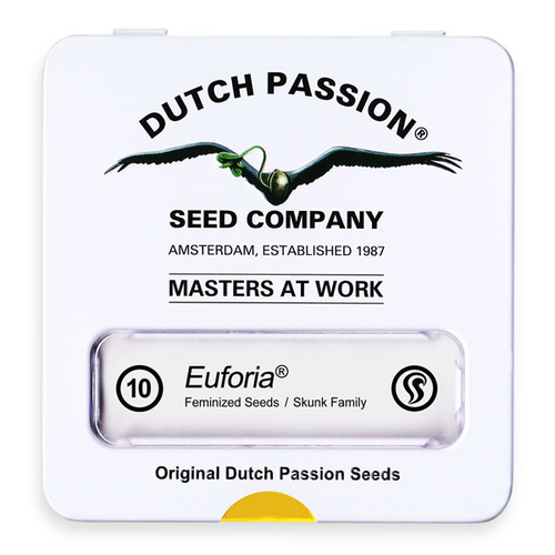 Euforia / FEM 10er / Dutch Passion