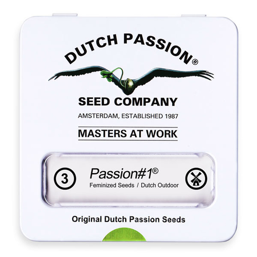 Passion #1 / FEM 3er / Dutch Passion