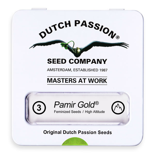 Pamir Gold / FEM 3er / Dutch Passion
