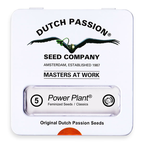 Power Plant / FEM 5er / Dutch Passion