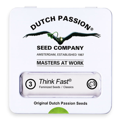 Think Fast / FEM 3er / Dutch Passion
