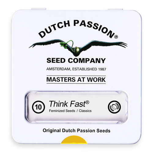 Think Fast / FEM 10er / Dutch Passion