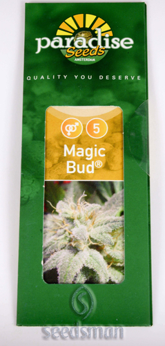 Magic Bud / FEM 10er / Paradise Seeds