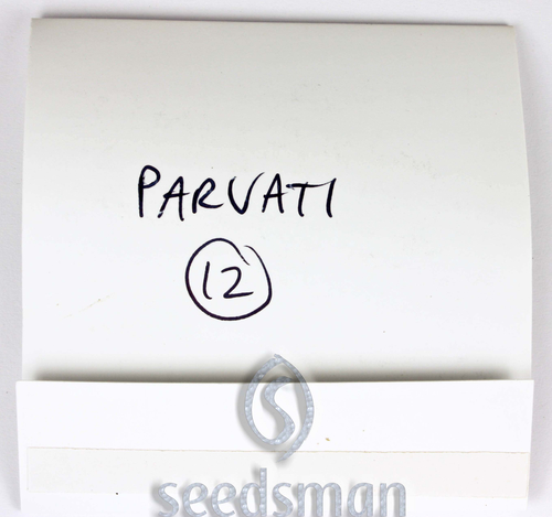 Parvati / REG 12er / The Real Seed Company