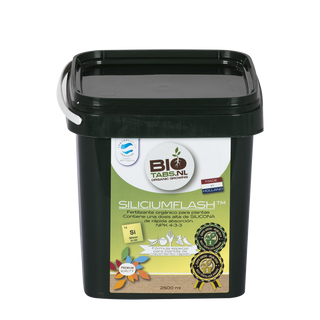 BioTabs Silicium Flash 2500ml