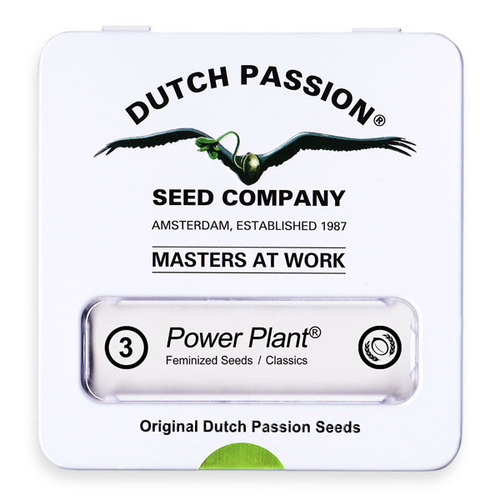 Power Plant / AUTOFEM 7er / Dutch Passion