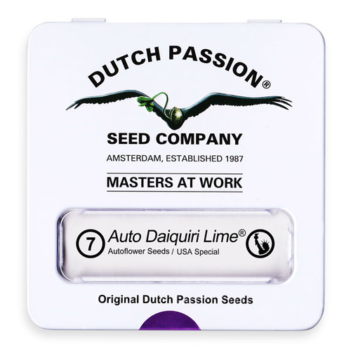 AutoDaiquiri Lime / AUTOFEM 7er / Dutch Passion